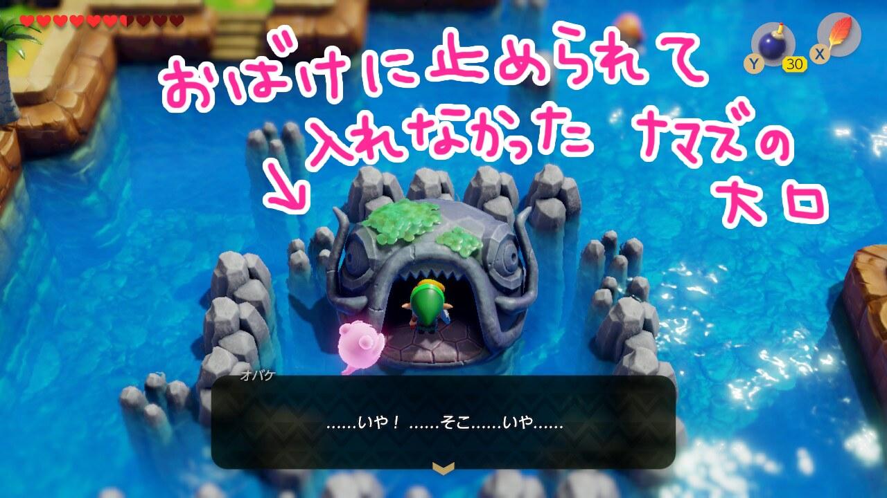 ゼルダの伝説夢をみる島ネタバレありプレイ日記5_ナマズの大口