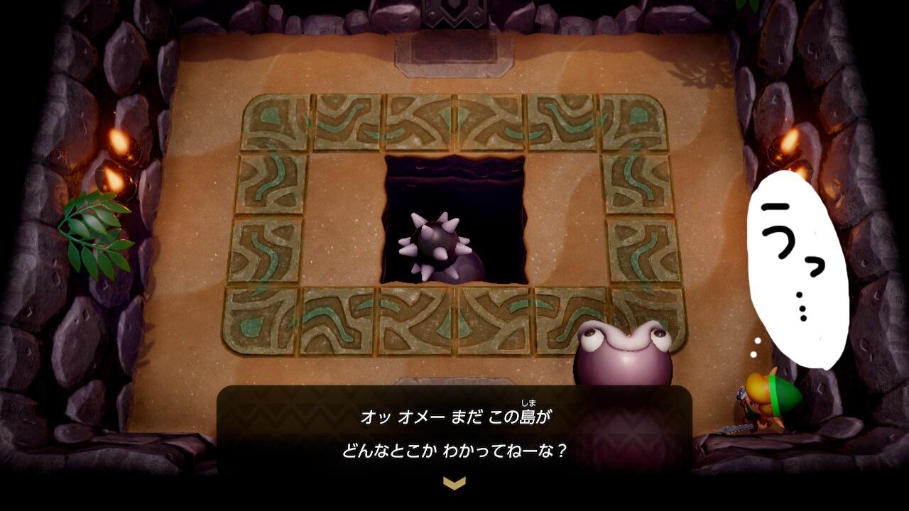 ゼルダの伝説夢をみる島ネタバレありプレイ日記5_フッカーの言葉