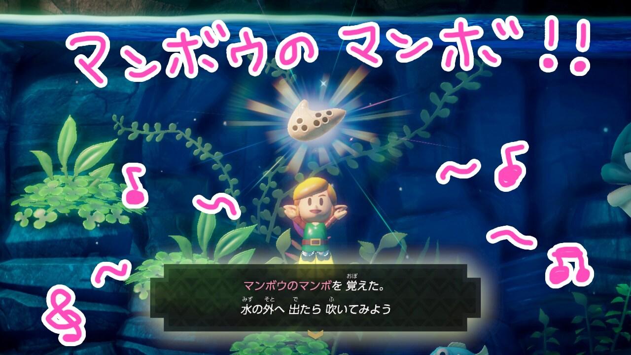 ゼルダの伝説夢をみる島ネタバレありプレイ日記6_マンボウのマンボを覚えた