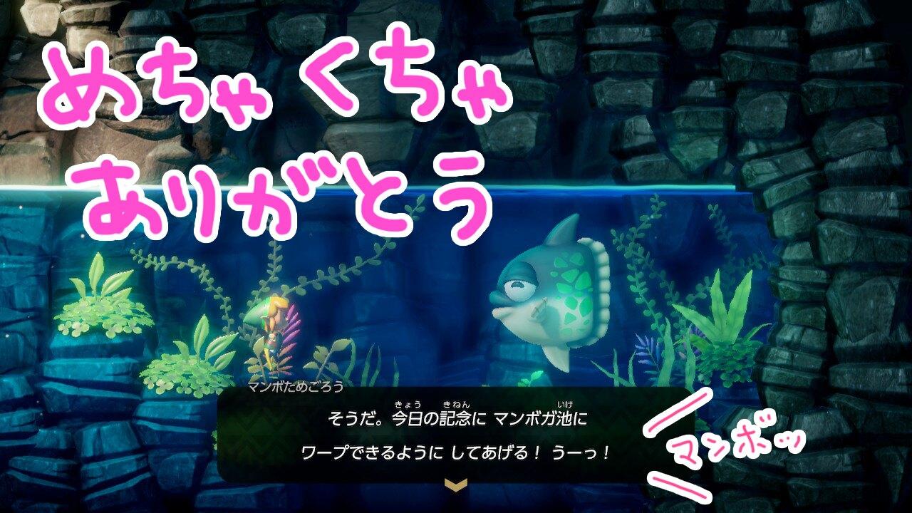 ゼルダの伝説夢をみる島ネタバレありプレイ日記6_マンボガ池開通