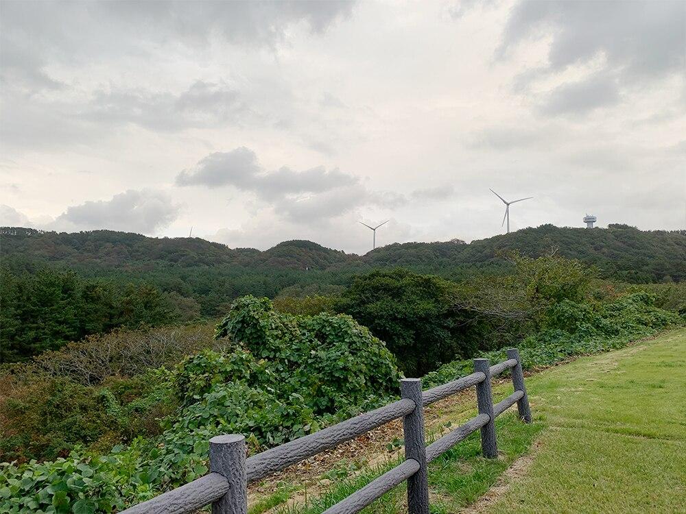 ウェスパ椿山の景色